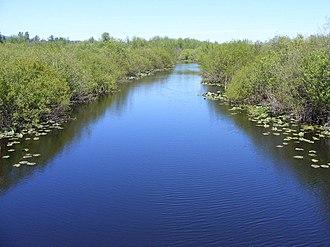 Black River (Chehalis River) - Black River