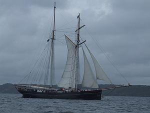 Brest2012 Wylde Swan.JPG