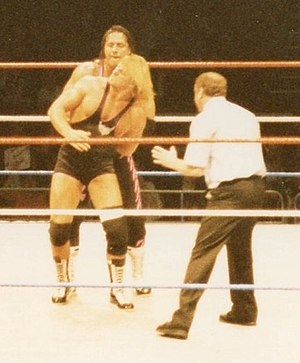 Owen Hart - Owen's feud with his brother Bret won the Pro Wrestling Illustrated Feud of the Year award and garnered praise from the Wrestling Observer Newsletter for their steel cage match at SummerSlam
