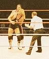 Bret & Owen Hart Wrestling.jpg