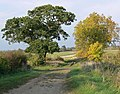 Bridleway towards Bottesford - geograph.org.uk - 1039588.jpg