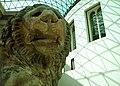 British Museum Lion 4887244869.jpg