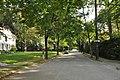 BrooklineMA NorfolkStreet ChestnutHillHD.jpg