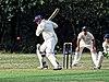 Buckhurst Hill CC v Dodgers CC at Buckhurst Hill, Essex, England 10.jpg