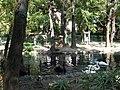 Bucuresti, Romania, Parcul Cismigiu; B-II-a-A-19655 (Lacul Lebedelor 9).JPG