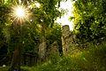 Burg Rodenstein.jpg