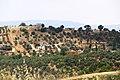 Burma - panoramio (19).jpg