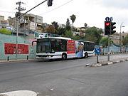Bus0306.jpg