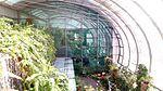 Butterfly Garden Changi Airport Singapore by Dr Raju Kasambe DSC 5250 (1).jpg