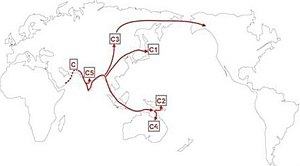 Peopling of India - Note the route of the Y-DNA Haplogroup C through the Indian subcontinent to Australia.