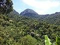 Cachoeiras de Macacu - State of Rio de Janeiro, Brazil - panoramio (25).jpg