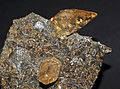 Calcite Elmwood sur sphalérite (USA) 1.jpg