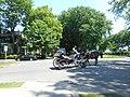 Caleche, avenue Tache - 03.jpg
