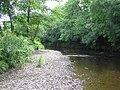 Camowen River, Cranny - geograph.org.uk - 1394911.jpg