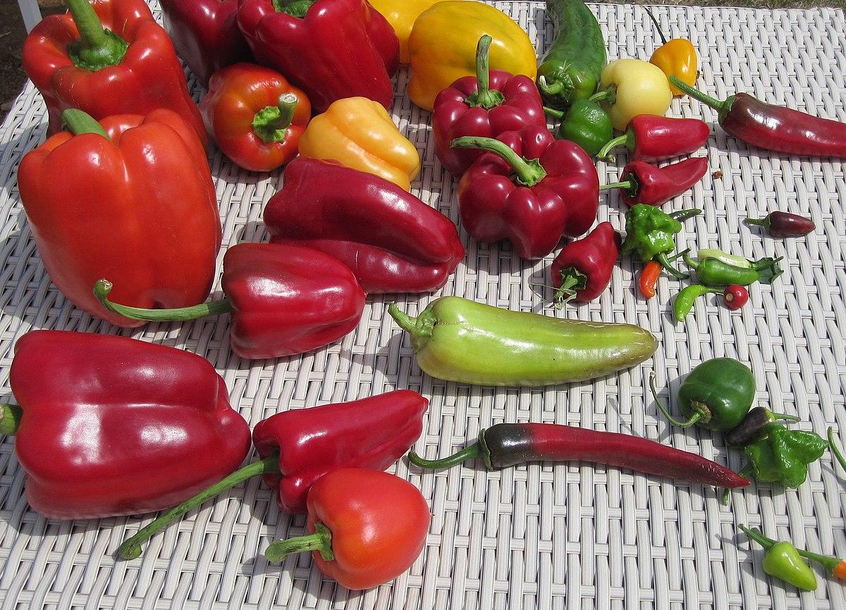 Liste de variétés de piment — Wikipédia