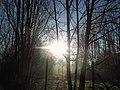 Caravaggio - alba d inverno 1668.JPG