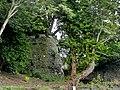 Cardigan - panoramio (8).jpg