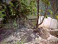 Caribe y Caraballeda diciembre 2000 011.jpg