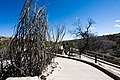 Carlsbad Caverns National Park and White's City, New Mexico, USA - 48345015827.jpg