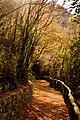 Cascata Capelli di Venere il sentiero.jpg