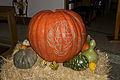 Castroville Pumpkin.jpg
