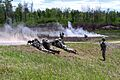 Cavalry live-fire exercise highlights active duty component to foreign attachés 051217-A-EB125-047.jpg