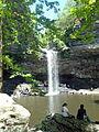 Cedar Falls Trail, Petit Jean State Park 013.jpg