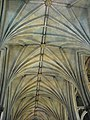 Ceiling of the nave, Bristol Cathedral - geograph.org.uk - 1149942.jpg
