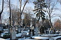Cemetery Házsongárd 4.JPG