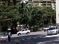 Centro Medico Docente La Trinidad (CMDLT) 2012 058.jpg