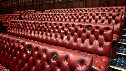 Benches in the chamber are coloured red. In contrast, the benches in the House of Commons are green. Chamber of the House of Lords benches.jpg