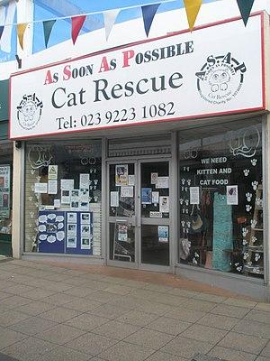 Charity shop in Wellington Way