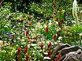 Chelsea Flower Show 2014 - The Night Sky Garden.jpg