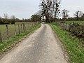 Chemin Creuses - Crottet (FR01) - 2020-12-03 - 3.jpg