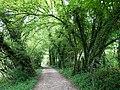 Chemin des Marais @ Seynod (50885811017).jpg
