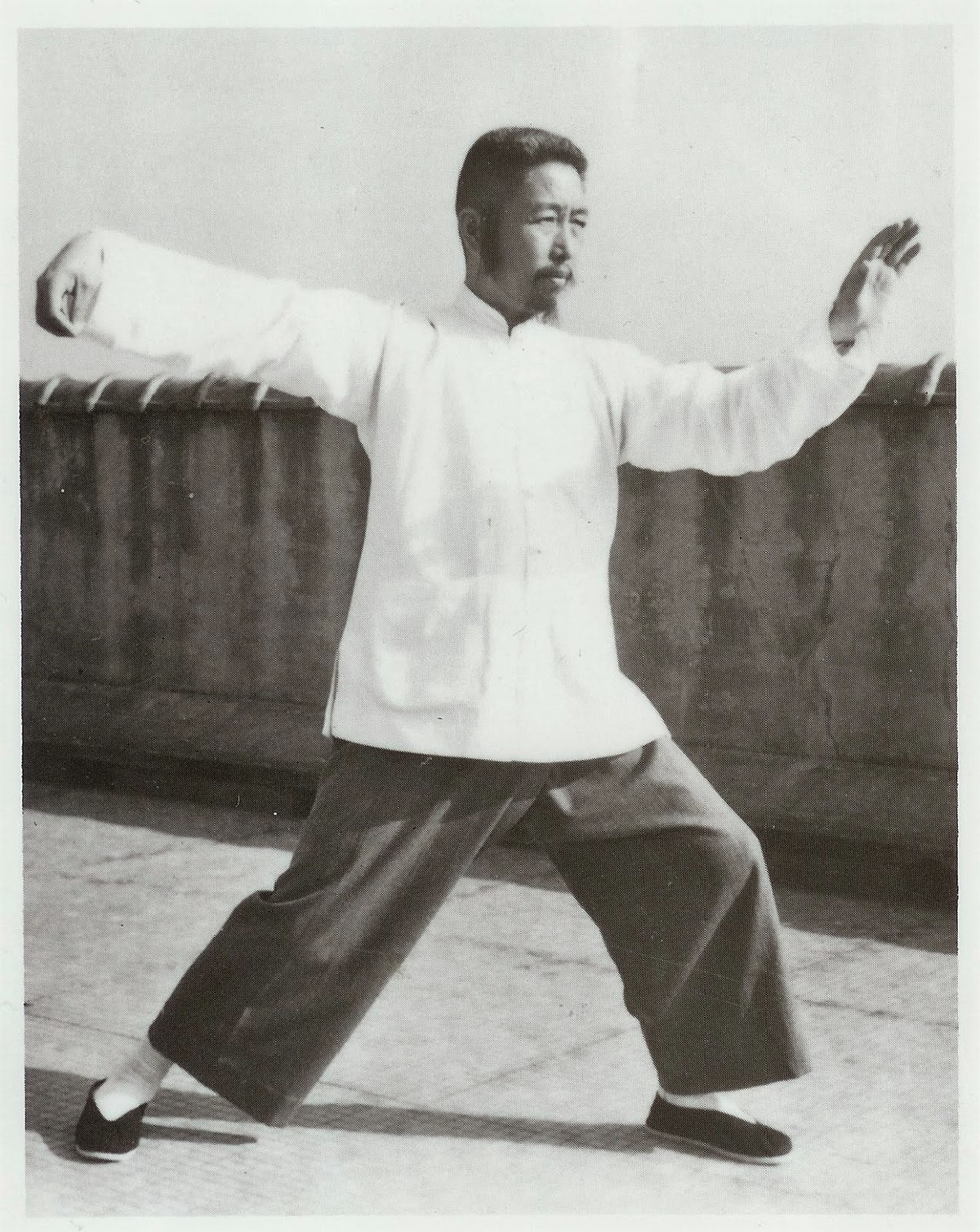 the essence of tai chi chuan the literary tradition
