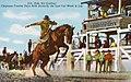Cheyenne WY - Ride 'Em Cowboy! (NBY 430479).jpg