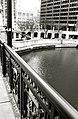 Chicago - panoramio (6).jpg
