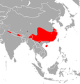 Chinese Rufous Horseshoe Bat area.png