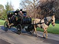 Christmas Horse and Carriage, Kew Gardens - geograph.org.uk - 296104.jpg