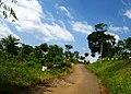 Citalem, Cipongkor, West Bandung Regency, West Java, Indonesia - panoramio (13).jpg