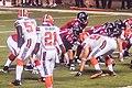 Cleveland Browns vs. Atlanta Falcons (28517285513).jpg
