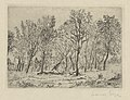 Clump of Trees, print by James Ensor, 1888, Prints Department, Royal Library of Belgium, F. 38983.jpg