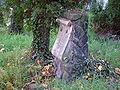 Cmentarz ewangelicki w Bielsku-Bialej przy ul Modrzewskiego.jpg