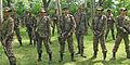 CoBRA Commandos.jpg