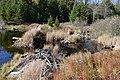 Colton, NY, USA - panoramio (8).jpg
