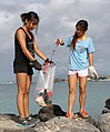 Community Clean-up at Fort DeRussy (10019357976).jpg