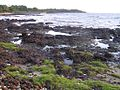 Conakry beach (3329203370).jpg