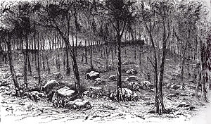 Culp's Hill - Confederate pickets on Culp's Hill (engraving from The Century Magazine).