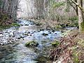 Confluence of the Big Bozna and Little Bozna rivers - Polhov Gradec Slovenia.JPG